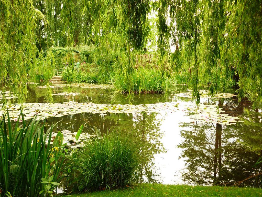 Petit jardin romantique tours maison design for Salon de jardin ile de france